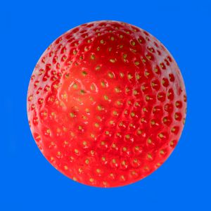 Erdbeeren008