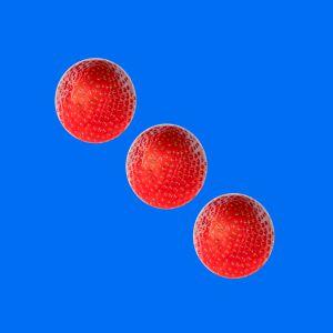 Erdbeeren014