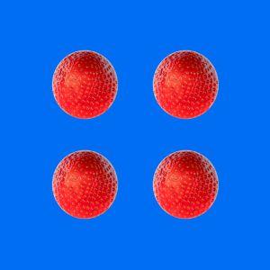 Erdbeeren015
