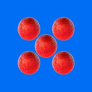 Erdbeeren016
