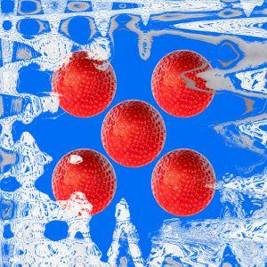 Erdbeeren032