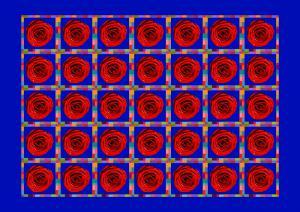 Flowers070-Rosen102--Serie R-Bild 7aMax
