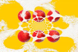045-Erdbeeren-Art