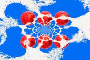 052-Erdbeeren-Art