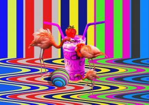 Flamingo-SerieD1-Art
