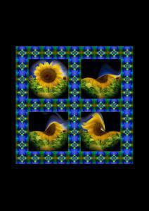 Sonnenblumen016a-Flowers-Serie S-Bild 5-Objekt2