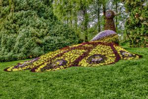 Blumen06-7633 7636TT2-Galerie