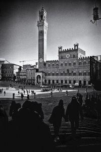 Toskana-Sienna027-sw